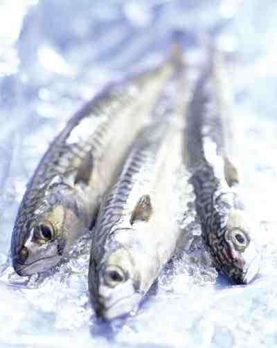 http://www.healthhype.com/wp-content/plugins/omega-3-fish-benefits.jpg