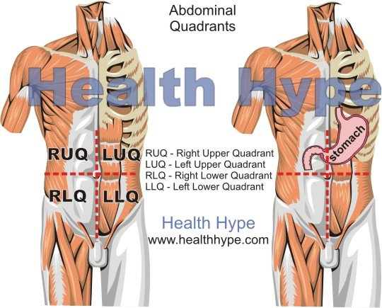 Pain above right hip causes and symptoms healthhype organs located above the right hip ccuart Gallery