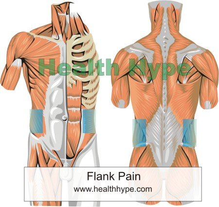right flank pain – meaning, signs or no symptoms and causes, Skeleton