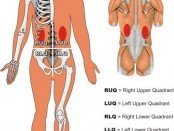 Kidney Pain