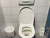 seat toilet