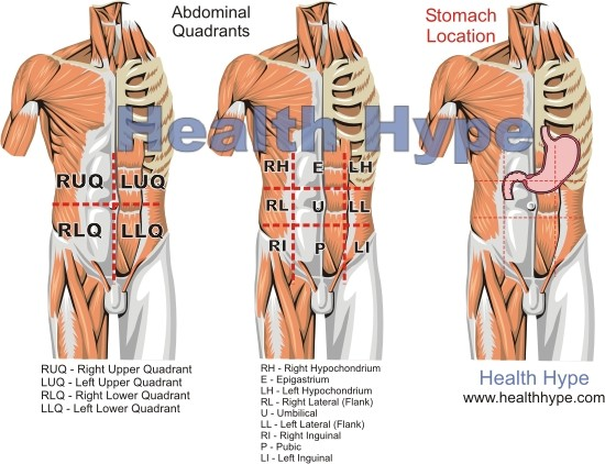 Stomach pain at night digestive nighttime pain adults children the anatomical location of the stomach ccuart Gallery