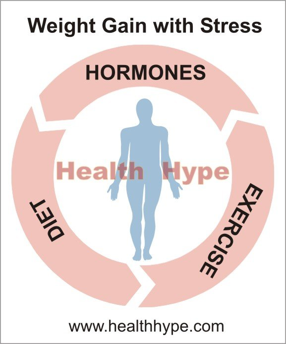 Weight Gain with Stress (Hormones, Diet and Exercise) | Healthhype.com