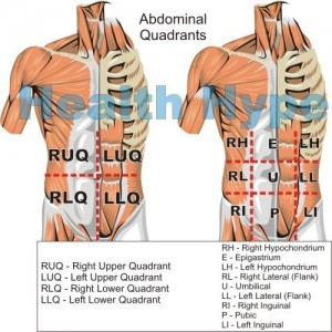 Abdominal quadrants and regions