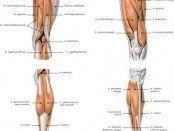 Leg numbness