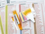 urine dipstick test